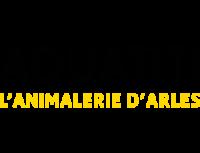 aquatiti animalerie toilettage arles