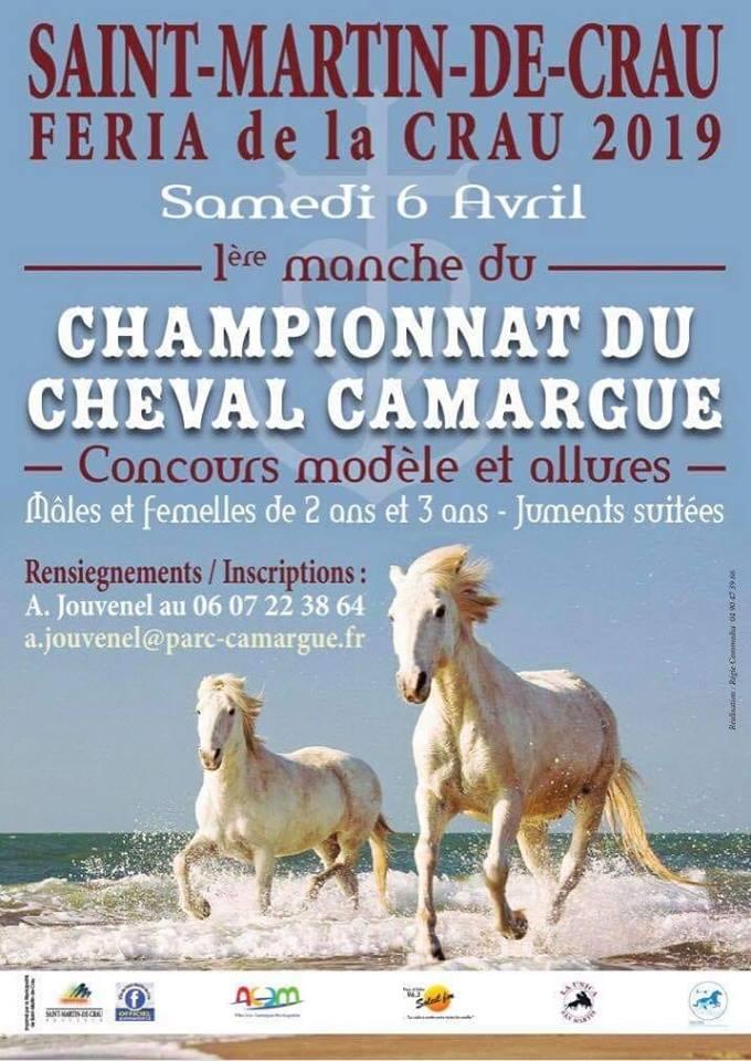 championnat cheval camargue feria de la crau 2019 a saint Martin de Crau