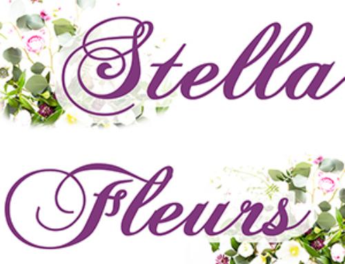 Stella Fleurs, artisan fleuriste à Arles