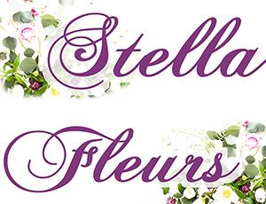 fleuriste stella fleurs arles