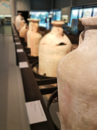 exposition l'Armée de Rome au Musée de l'Arles Antiques