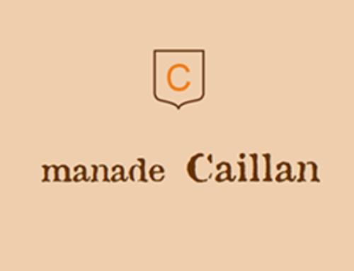 Manade Caillan, élevage de taureaux et salle de réception à Saint Rémy de Provence