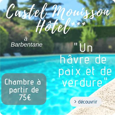 hotel le castel Mouisson à Barbentane proche arles, Alpilles et Montagnette