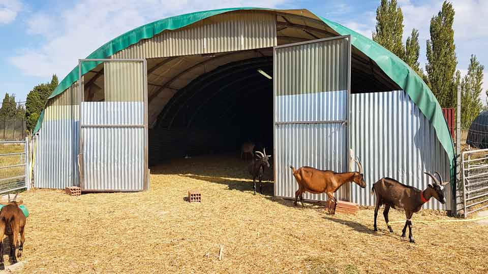 fromages de chèvre fermiers Alpilles, la Ferme du Ségalon à Graveson