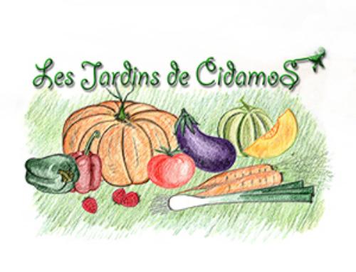 Les Jardins de Cidamos, Producteur de fruits et légumes Bio à Fontvieille