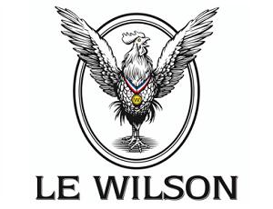Café et brasserie à Arles, une adresse historique Le Wilson sur le boulevard des Lices