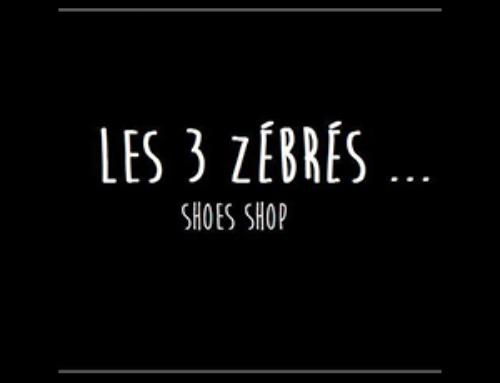 Les 3 Zébrés, Concept-store mode à Arles